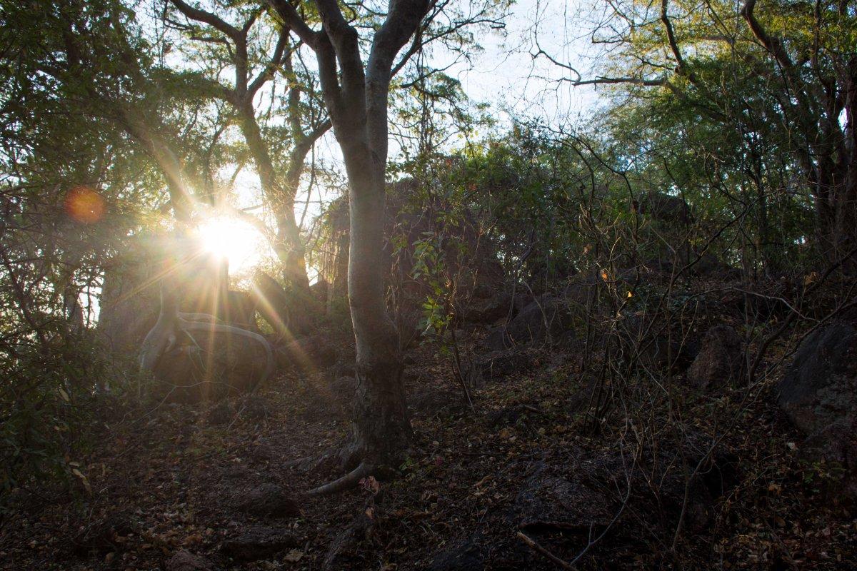 Mumbo Island hike